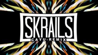 Skrillex & Snails - Skrails (CAYU Remix)【Dubstep】