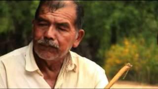 Tairari Cultura Guaraní (AribibiTV)