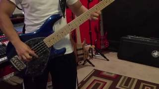 Pesado - Te Quiero, Te Amo (Bass Cover)