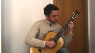 The Last of the Mohicans - The Gael (Guitar Arrangement by G. Torrisi - Performed by D. Bitetti)