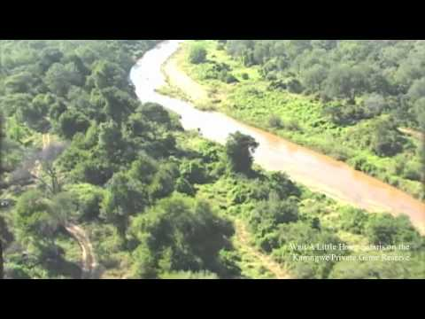 African Big Five Horse safaris and The Karongwe Game Reserve