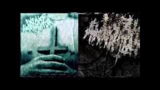 Infant Annihilator Feat Rings of Saturn - Lyrics