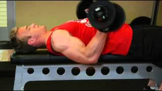 Biceps   Lying Supine Dumbbell Curl   Exercises Guide!   Live Health Club