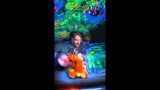 Ianuaria - Cosmic Frog 2011
