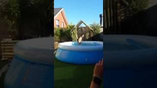 Fiesta en la piscina.