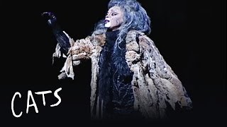 Memory (Paula Lima) - Brazil | Cats the Musical