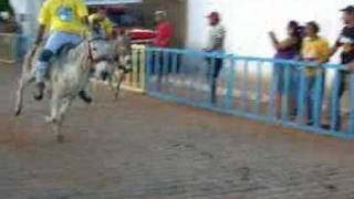 9ª Corrida de Jegue de Zabelê-PB