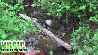 Nature Sounds: Steven's Creek  Mini Water Stream
