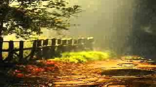 Chuva de Maio (João Mineiro & Marciano)