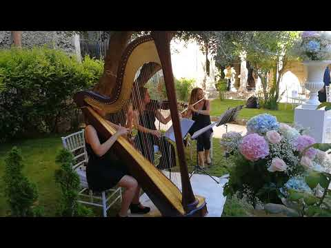 LE DOLCI NOTE WEDDING MUSIC SICILY