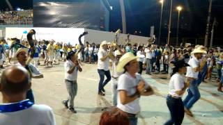 "Ala ""Comitiva Rainha do Brasil"" - Vila Maria -  11/02/2017"