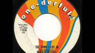 McKINLEY MITCHELL- THE TOWN I LIVE IN