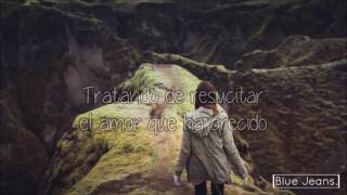 Michl - Broken Roots  (Traducida al español)