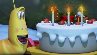 LARVA   Le gâteau d'anniversaire   Dessin animé   Dessins animés pour enfants   LARVA Officiel HD
