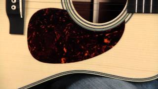 Pick Guard - Acoustic Guitar Anatomy