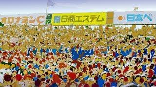 """大阪桐蔭高校 野球応援 映画ラ・ラ・ランドより """"Another Day of Sun"""" 【第99回 夏の全国高校野球】"""