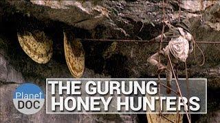Honing verzamelen in de Himalaya
