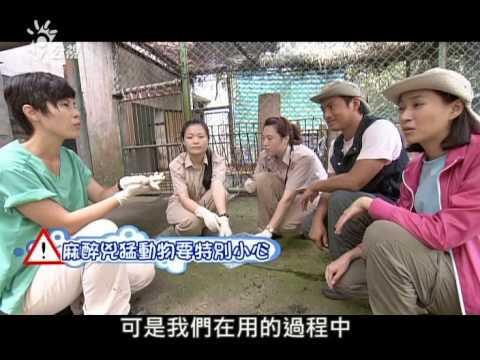 20131021[下課花路米]六福村動物園探索 - YouTube