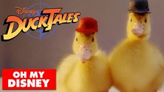 DuckTales Theme Song With Real Ducks | Oh My Disney IRL width=