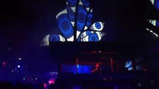 Waldfrieden - Wonderland 2016 | Fungus Funk #2