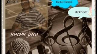 SERES JANI HALAS TÓ 2012