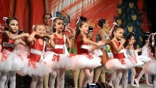 Luna Ballet 2011   Pinheirinho de Natal