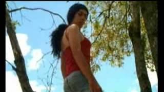 I'm Like a Bird - Nelly Furtado (Parody)