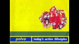 Polvo 04 Sure Shot