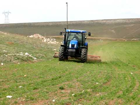New!! T6040 Elite Turkey Sivas Kangal ~ Kangalli84