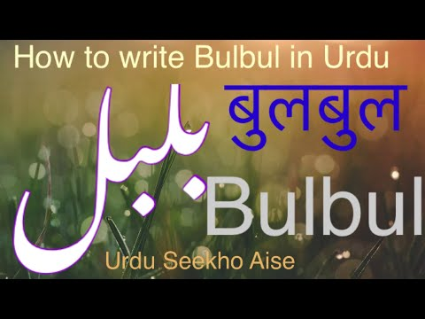 Thesis meaning in urdu cheap dissertation chapter ghostwriting for hire online