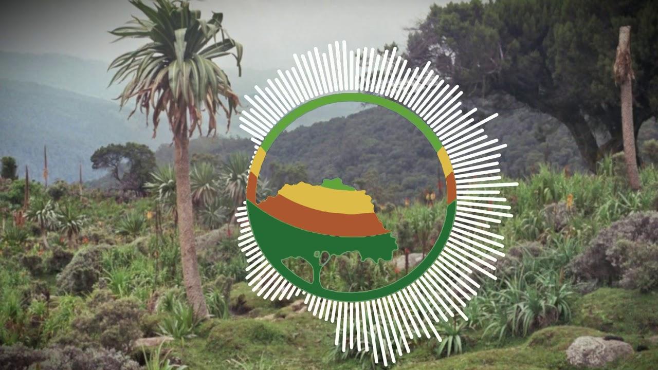 Download thumbnail for Qophii Filannoo Sirbaa (oromo music) feb  24