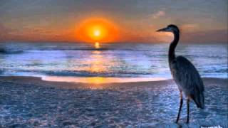 Marlena Shaw / California Soul