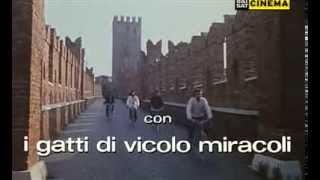 I GATTI DI VICOLO MIRACOLI - Verona beat (1979)