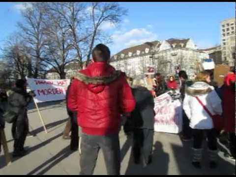Demo Ukraine Zürich 14.1.2012.dv