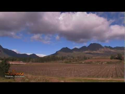 Stellenzicht Wine Estate Stellenbosch Cape Wine Lands South Africa – Africa Travel Channel
