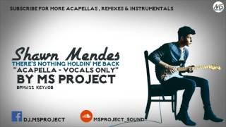 Shawn Mendes - There's Nothing Holdin' Me Back (Acapella - Vocals Only)