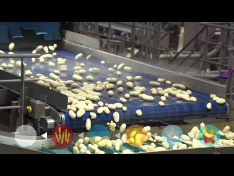麥當勞薯條是什麼做的(按右下字幕有中文翻譯) - YouTube