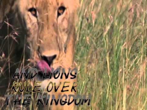 WildlifeAfricaSD.wmv