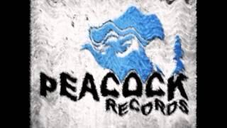 Mr. Ivex & Hyrule War ft. Dr. Peacock Warrior's Path