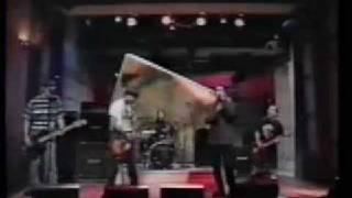 Bad Religion - Struck A Nerve (Live)