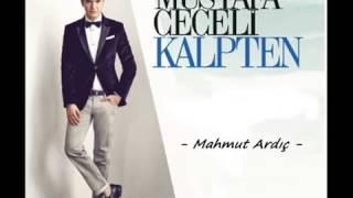 Mustafa Ceceli   Islak İmza   2015  Yeni