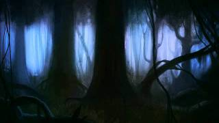 The Dark Forest....At night
