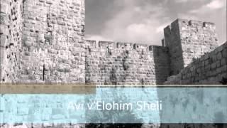 FOZ 8 Avi v'Elohim Sheli