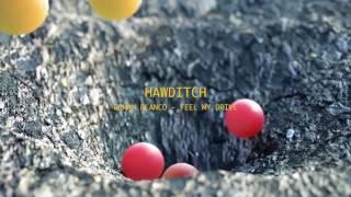 Roman Blanco Ft.Seven Note - Feel My Drive (Original Mix) [Hawditch Rec]