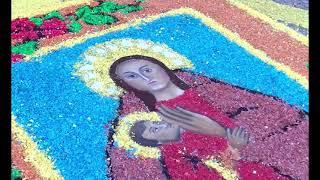 VETRINE IN FIORE OMAGGIO A MARIA