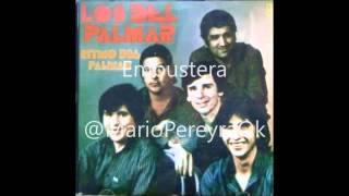 Mario Pereyra _ Embustera (Ritmo del Palmar 1988)