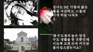 나비효과(매일미사 묵상)