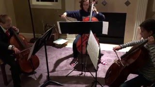 """Beethoven Symphony #7, Movement 2 """"Allegretto"""" for 3 cellos"""