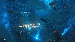 Afrojack Intro @ EDP Nova Era Beach Party 2016