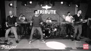 FLORIN RISTEI & FREESTAY - HALL OF FAME (Libertatea Live Music)